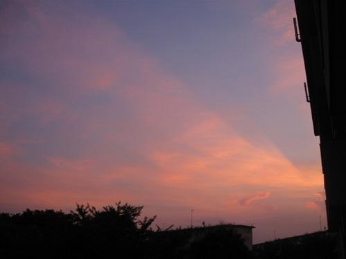 7時30分 空が染まってきれい。.jpg