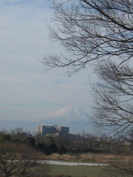 あ~富士山も待っててくれた♪.jpg