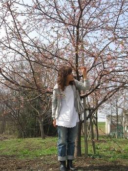さくら~桜~♪.jpg