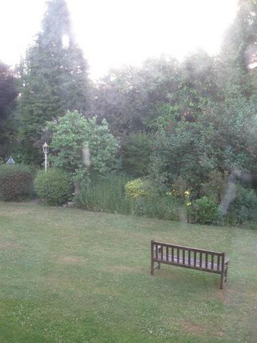 どこもお庭が綺麗です.jpg