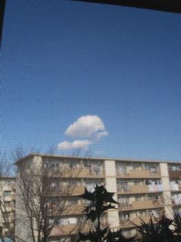 なんか可愛い雲だな~♪.jpg