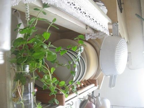 キッチンの棚にミントグリーン♪.jpg