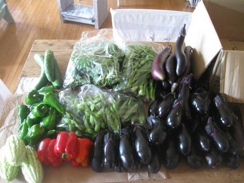 ツヤ姉から 野菜が♪きくちゃんと半分こしよっと♪.jpg