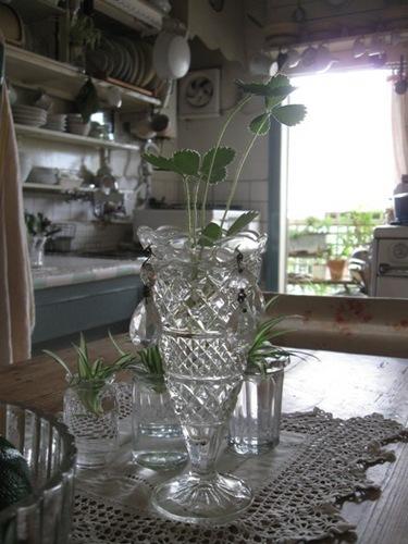 テーブル~キッチン~ベランダへ♪.jpg