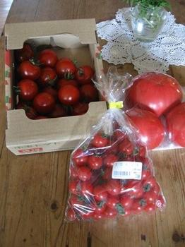 トマト 3種♪.jpg