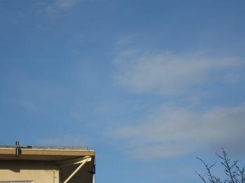 一日中座って仕事 あ~ 空が青いなぁ~.jpg