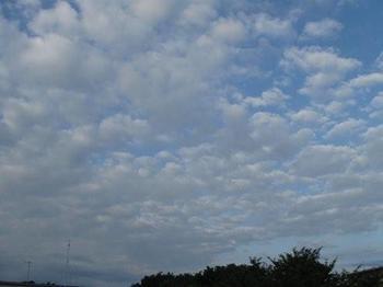 今朝の雲.jpg