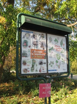 公園の木の種類と鳥の名前の看板が可愛い.jpg