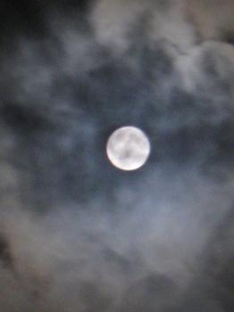 夕べはまん丸満月でした☆.jpg