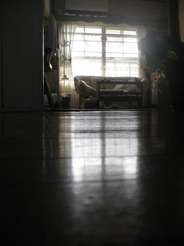 夕方 モップで床をゴシゴシ.jpg