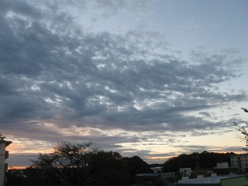 朝6時 台風は行き過ぎたな♪.jpg
