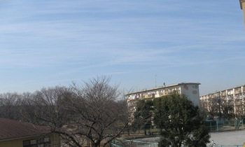 柔らかな春の空.jpg