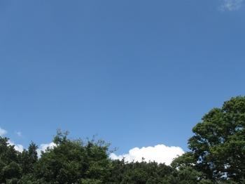 真白い 本当に真白い雲だ!.jpg