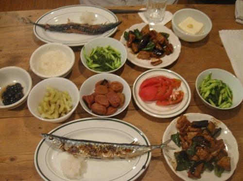 秋刀魚 ナス ゴ―ヤ ピーマン メカブ 何を食べてもおいしい♪.jpg