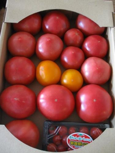 郡山からトマトが届いた♪幸せ!!!.jpg