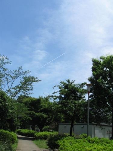 飛行機雲がまっすぐ延びて どんな人が乗ってるのかな~.jpg