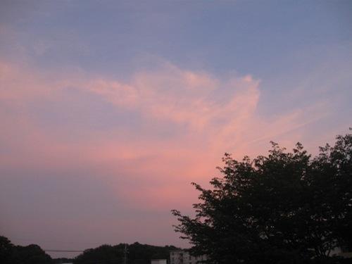 綺麗なな夕日 一日が終わるね.jpg
