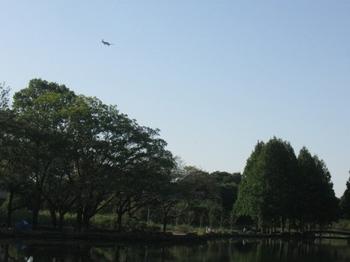 飛行機発見.jpg